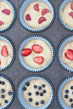 Muffins. Royalty Free Stock Photo