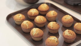 Muffins in a tray. Twelve muffins in a tin tray. stock footage