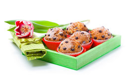 Muffins with tulips Stock Photos