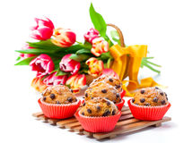 Muffins with tulips Stock Photography