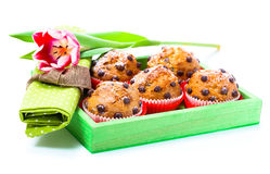 Muffins with tulips Royalty Free Stock Photo