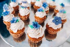 Muffins with whipped cream and frosting on a silver table in stainless steel Royalty Free Stock Photo