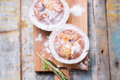 Muffins in white flour Royalty Free Stock Image