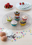 Muffins on wooden and cooling grid Stock Image