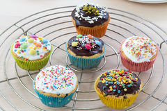 Muffins on wooden and cooling grid Royalty Free Stock Photos
