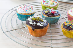 Muffins on wooden and cooling grid Stock Images