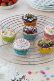 Muffins on wooden and cooling grid Stock Photos