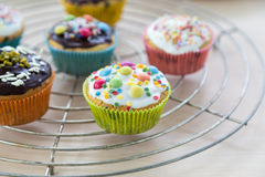 Muffins on wooden and cooling grid Royalty Free Stock Photo