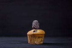 Muffins Royalty Free Stock Images
