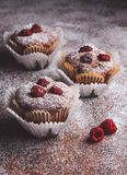 Muffins on a wooden table covered with sugar. Shallow depth of field Royalty Free Stock Photos