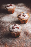 Muffins on a wooden table covered with sugar. Shallow depth of field Royalty Free Stock Image