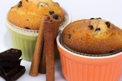 Muffins z cynamonowymi kijami i czekoladą Zdjęcie Royalty Free