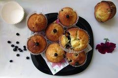 Muffins z czarnymi jagodami Zdjęcie Royalty Free