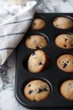 Muffins z czarnymi jagodami Obraz Royalty Free