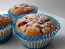 Muffins z jagodami Zdjęcie Stock