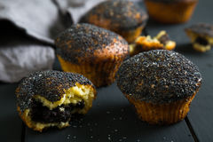Muffins z makowymi ziarnami Obraz Royalty Free