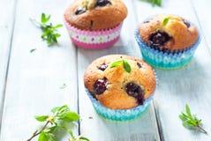 Muffins z wiśnią Obrazy Royalty Free