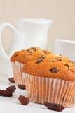 Muffins zum Frühstück Stockbilder