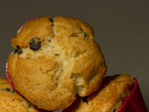 Muffinsclose-up Royalty-vrije Stock Foto's
