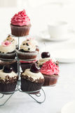muffinstand Royaltyfri Fotografi