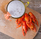 Mug of beer and boiled crayfish Stock Photography