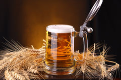Mug of beer on a chest. Mug of light beer on a wooden chest with barley ears Royalty Free Stock Image