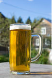 Mug of beer with foam on background of nature. Stay with alcohol on the outdoors. Royalty Free Stock Photography