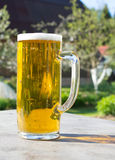 Mug of beer with foam on background of nature. Stay with alcohol on the outdoors. Royalty Free Stock Photo