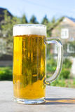 Mug of beer with foam on background of nature. Stay with alcohol on the outdoors. Stock Photography