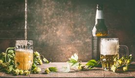 Mug of beer with foam and cold bottle of beer with dew drops and hops vines on a rustic table opposite a dark wall background royalty free stock photos