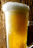 Mug of beer. Foamy beer poured into the jug Stock Images
