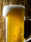 Mug of beer. Foamy beer poured into the jug Royalty Free Stock Photography
