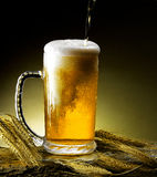 Mug of beer Stock Photography
