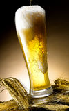 Mug of beer. Foamy beer poured into the jug Royalty Free Stock Images