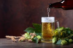 Mug of beer, grain and hops on a old wooden table. stock image