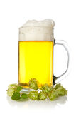 Mug of beer with hop Stock Images
