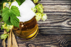 Mug with Beer with hop on a wooden table Stock Photos