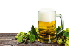 Mug with Beer with hop on wooden table isolated Royalty Free Stock Image