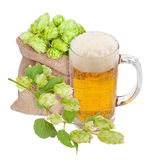 Mug of beer and hops. On white Royalty Free Stock Photo