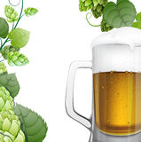 Mug of beer with hops branch Stock Photos