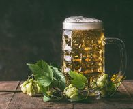 Mug of beer hops on dark rustic background,front view royalty free stock image
