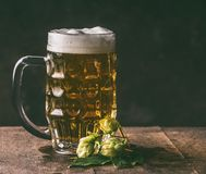 Mug of beer and hops on dark rustic table background, front view royalty free stock photos