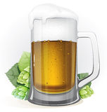 Mug of beer and hops with leaves Royalty Free Stock Image