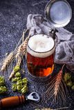 Mug of beer, hops and malt. Selective focus Stock Photography