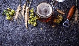 Mug of beer, hops and malt. Selective focus Royalty Free Stock Photo