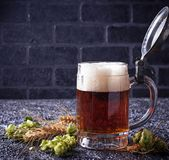 Mug of beer, hops and malt. Selective focus Royalty Free Stock Photography