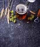 Mug of beer, hops and malt. Selective focus Stock Images