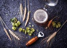 Mug of beer, hops and malt. Selective focus Stock Photo