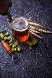 Mug of beer, hops and malt. Selective focus Royalty Free Stock Image