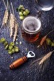 Mug of beer, hops and malt. Selective focus Royalty Free Stock Photos